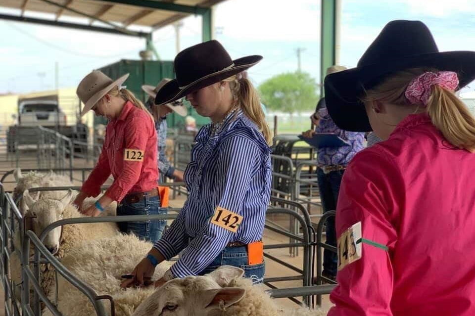 Western Young Judges Finals at Dubbo in 2019